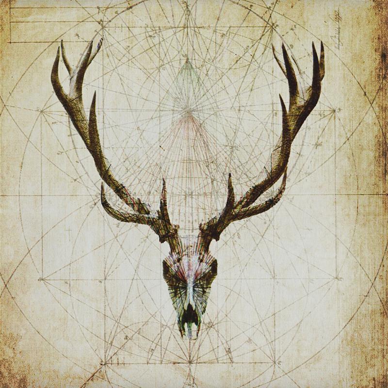Deer-Skull-Design-01-1200px.jpg