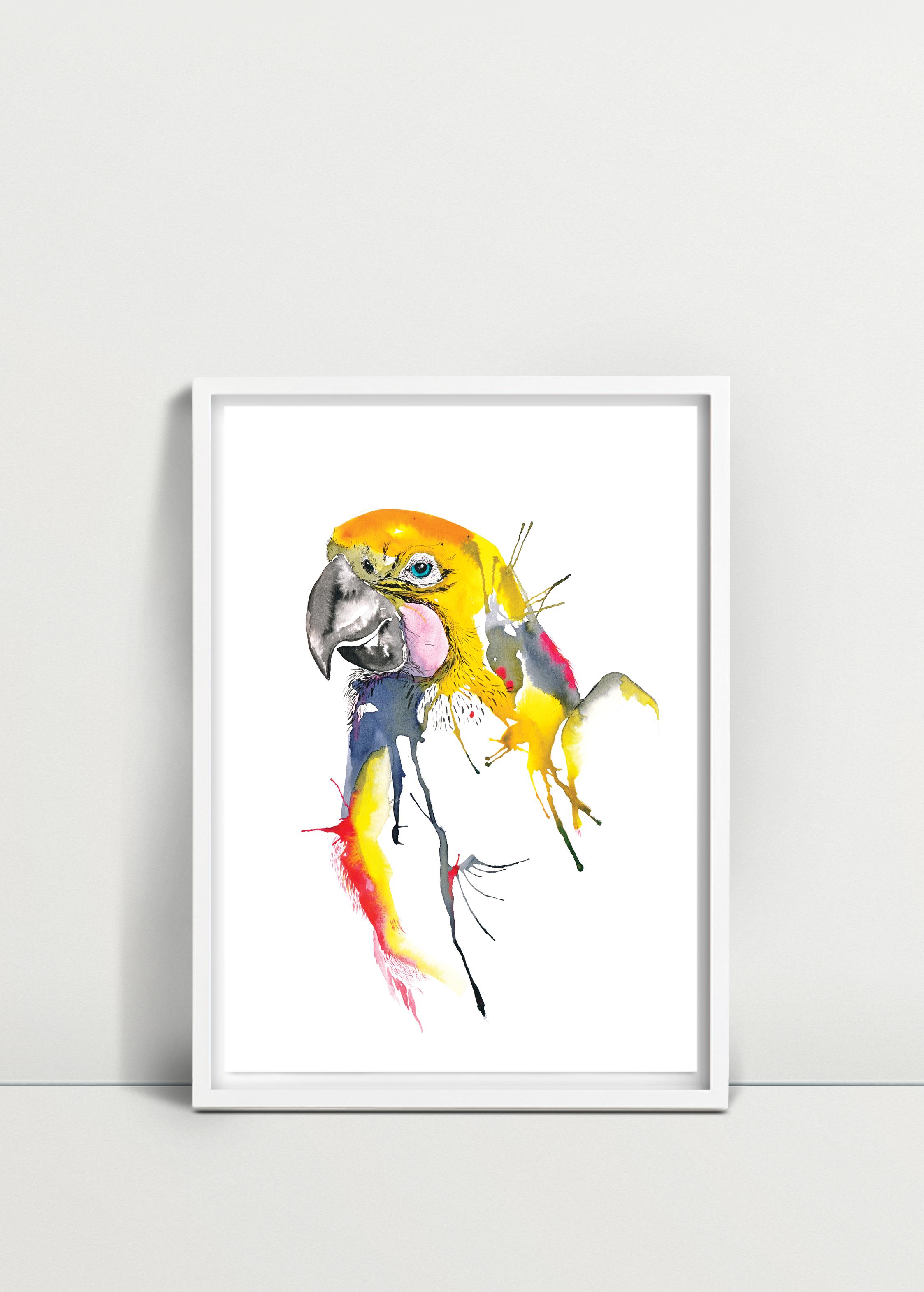 Parrot_22.png