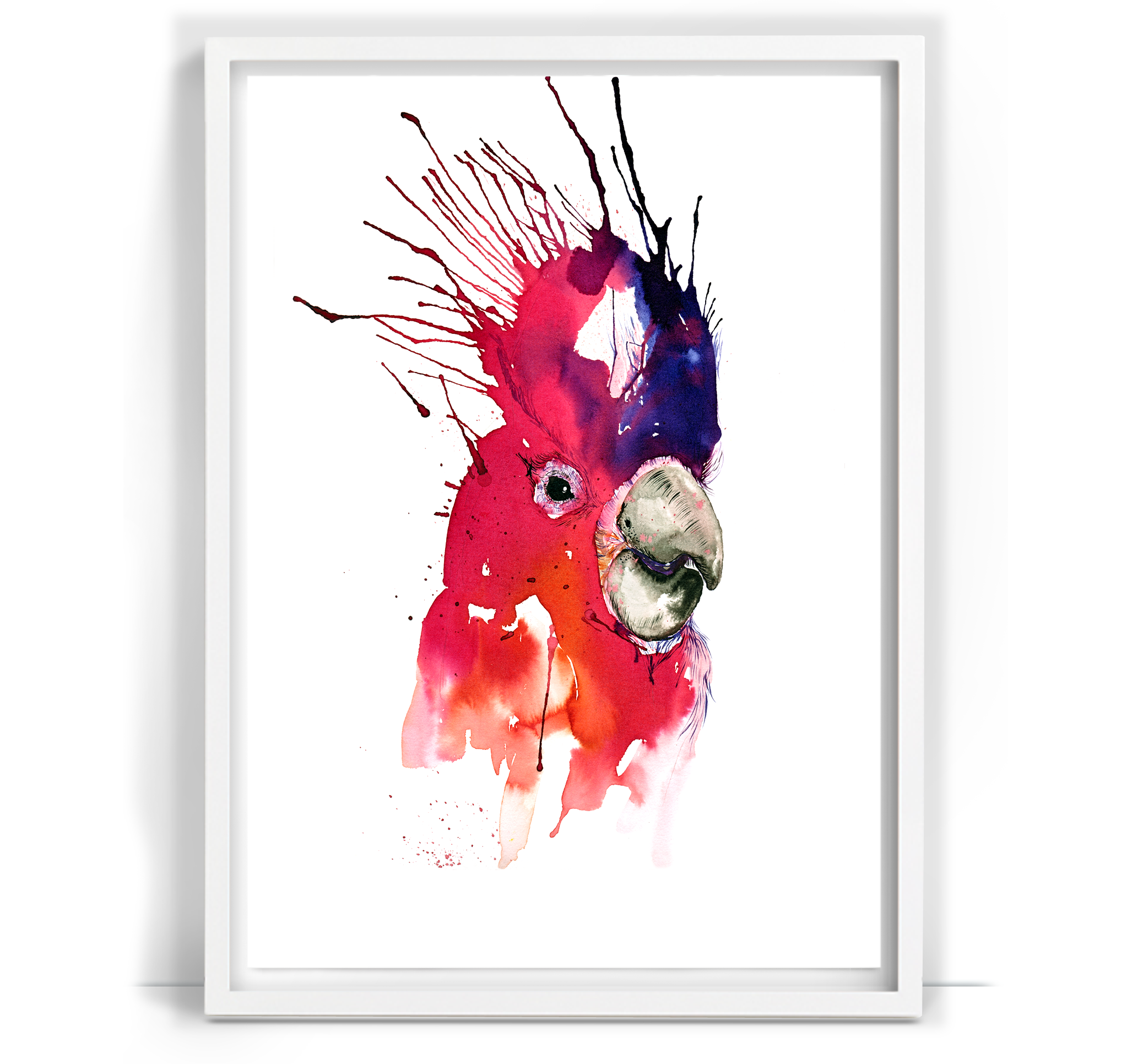 Parrot_16.png