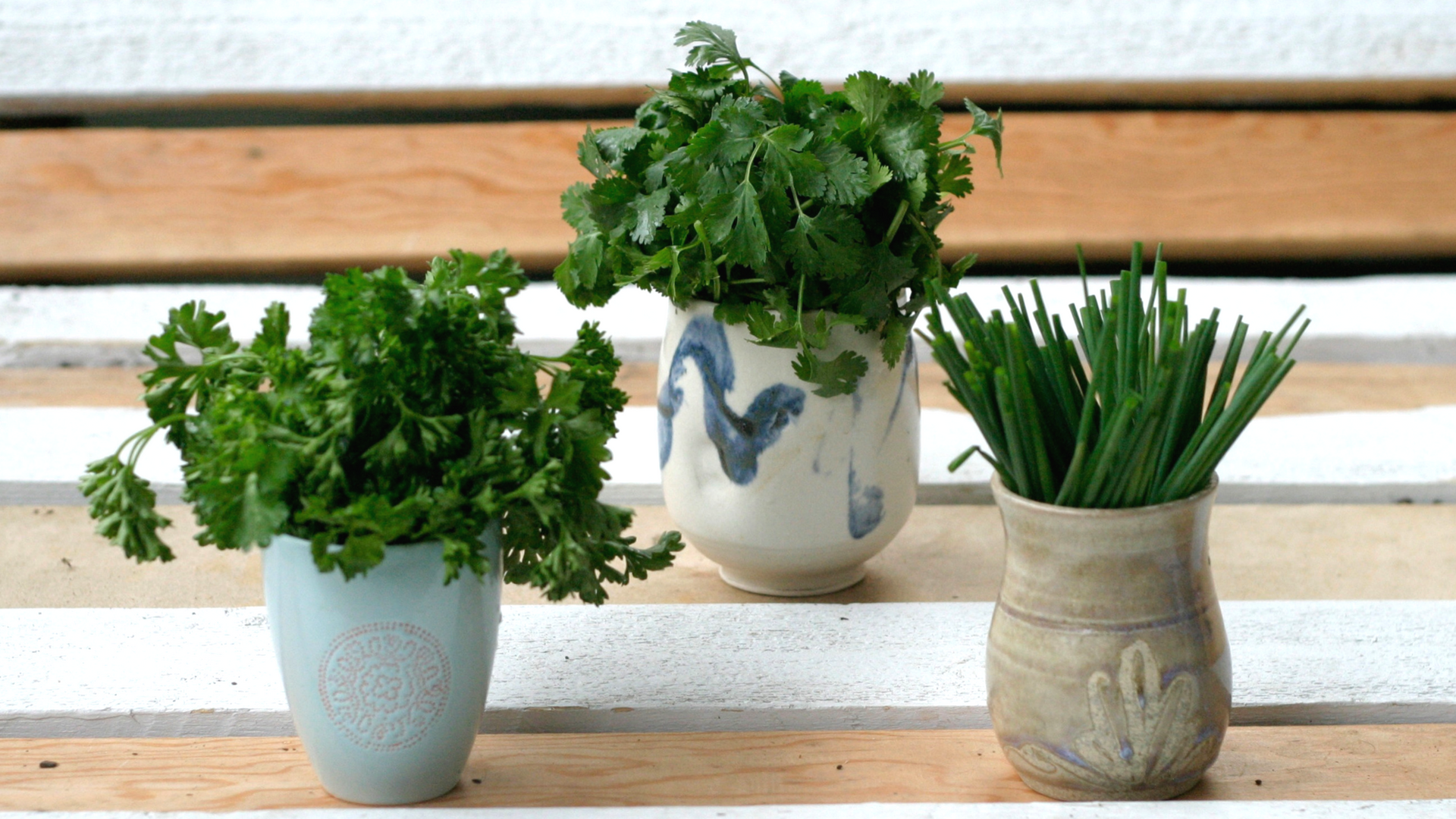 Photo Credit: the Green Moustache - Vit C in parsley: 133mg/100g
