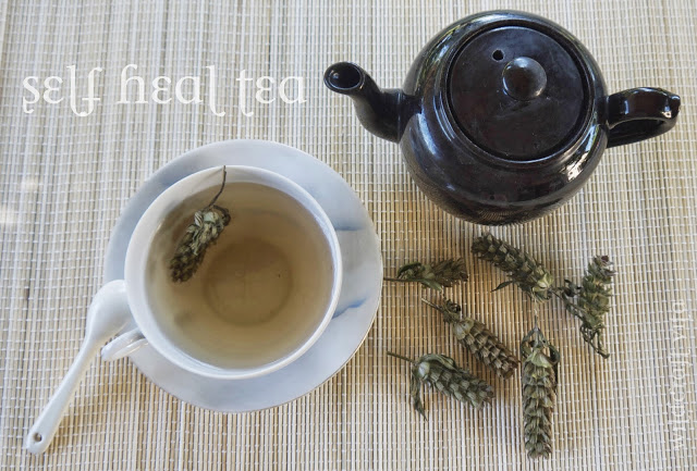 Self Heal Tea by Wildcraft Vita
