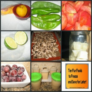 Ten Foods You Can Freeze Preserve by My Lamp Is Full