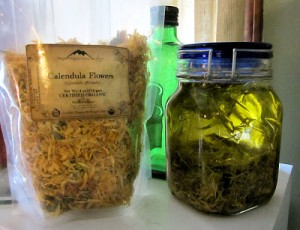 Calendula Oil & What's Cooking by The Auld Grey Mare