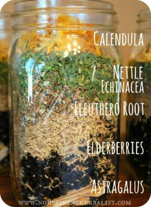 Immunity-Boosting elderberry Tincture by The Nourishing Herbalist
