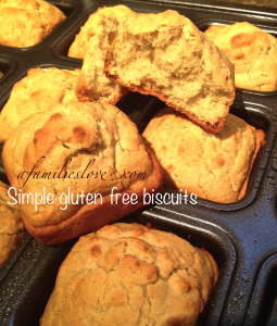 Simple Gluten Free Biscuit Recipe by A Families Love
