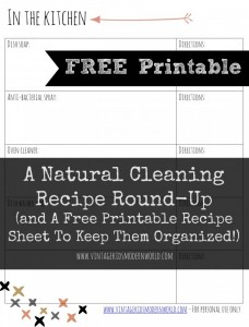 Natural Cleaning Recipe Roundup by Vintage Kids Modern World