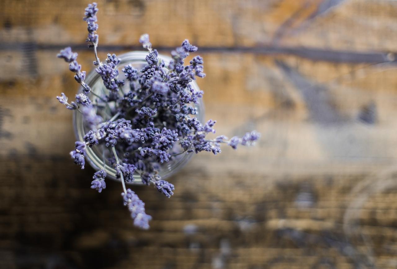 DriedLavenderFromTheTop-heather-schwartz-731012-unsplash.jpg