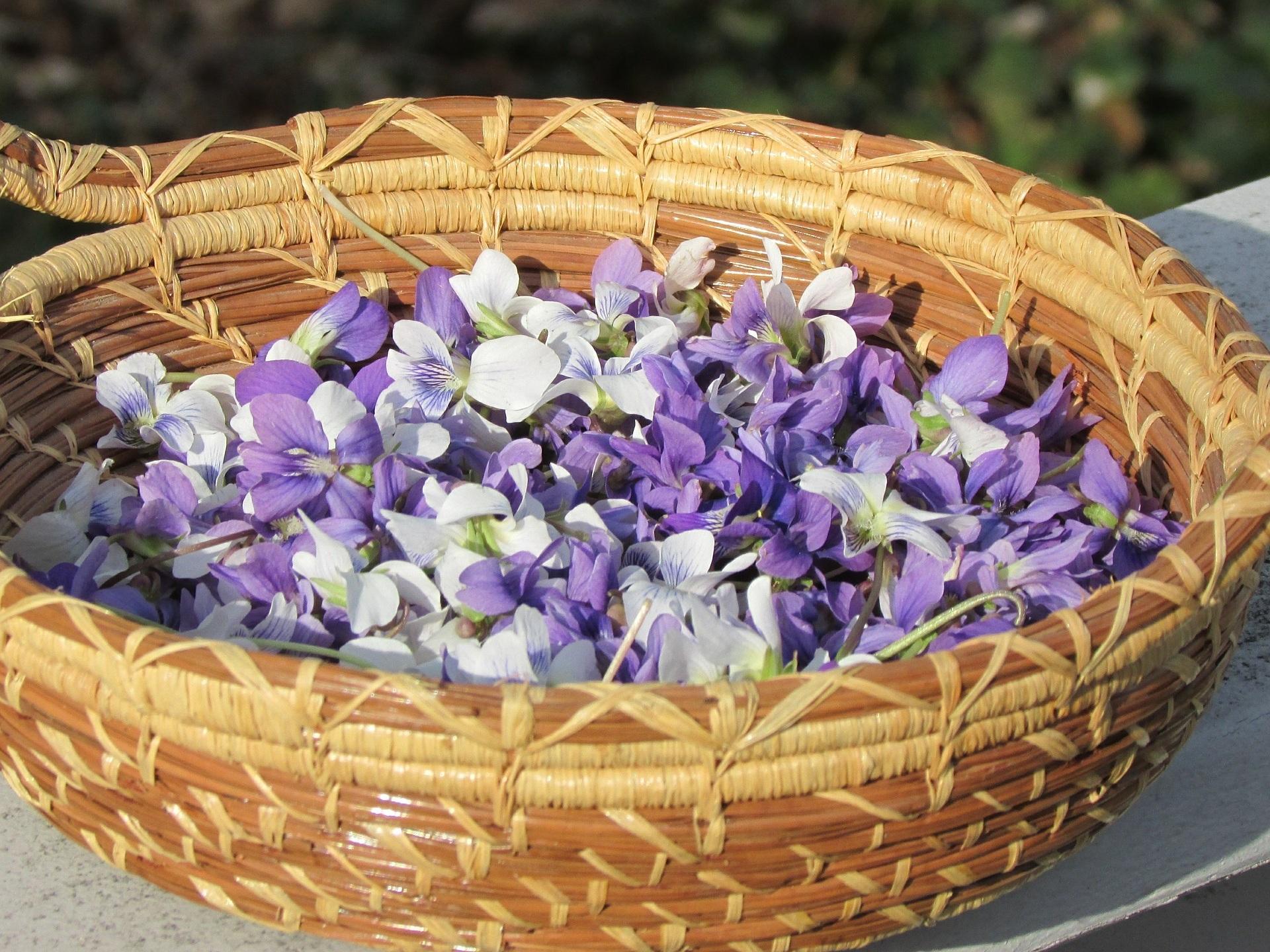 Basket-Violets.jpg