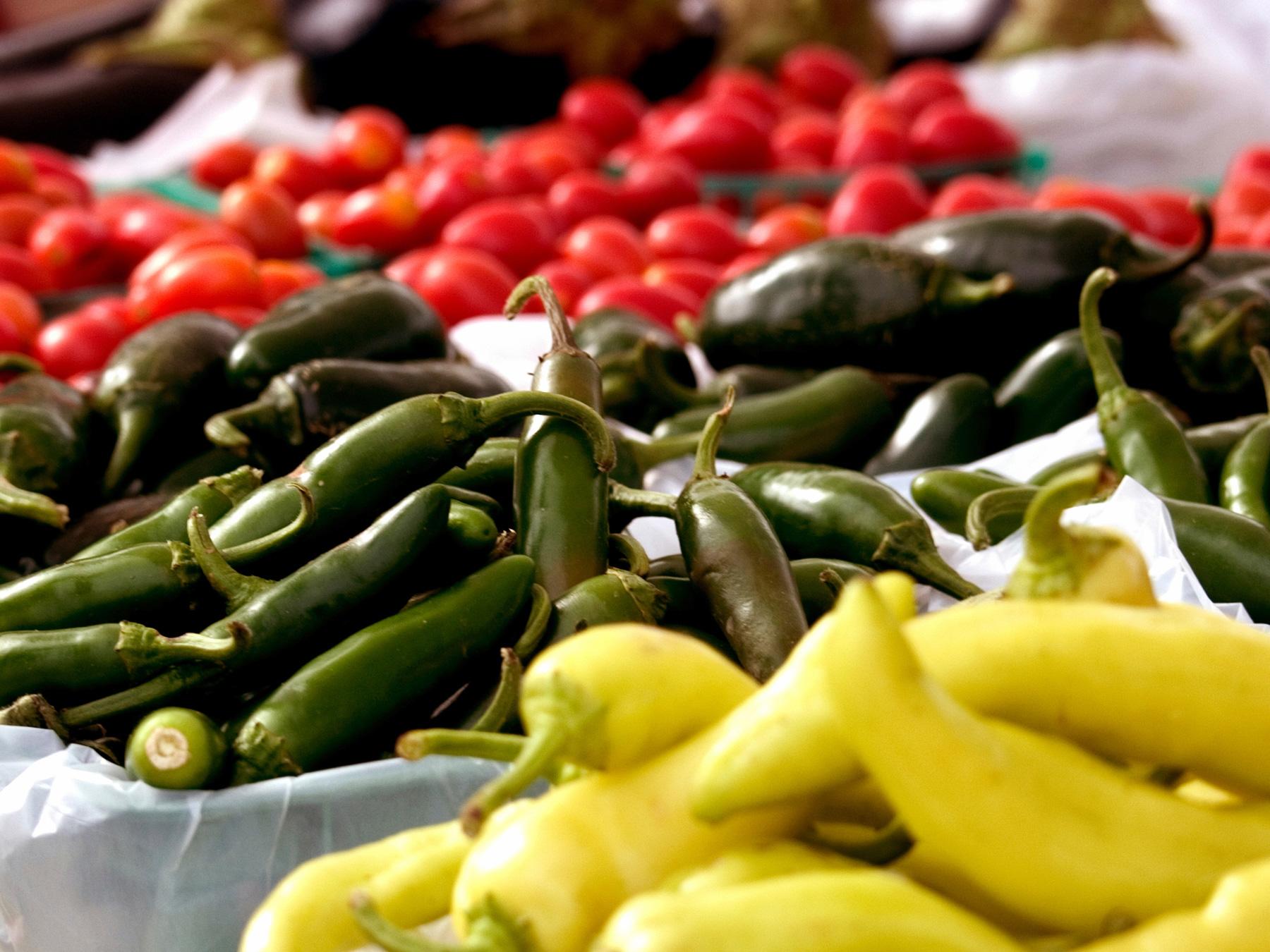 tomato pepper squash.jpg