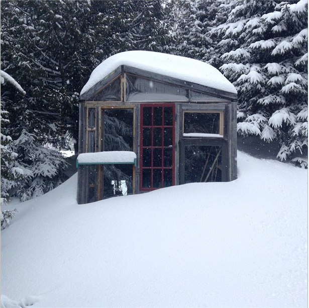The greenhouse in the snow