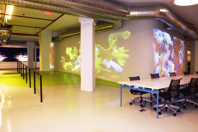 The Made in NY Media Center