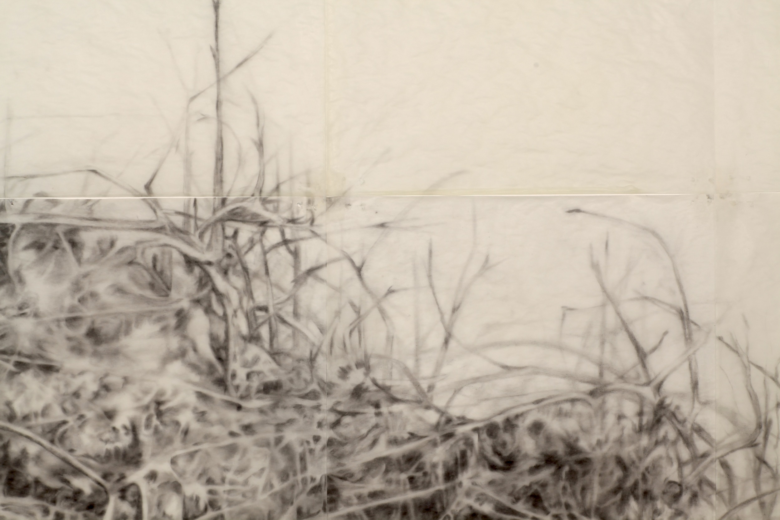 Pile (detail), graphite and beeswax on tracing paper