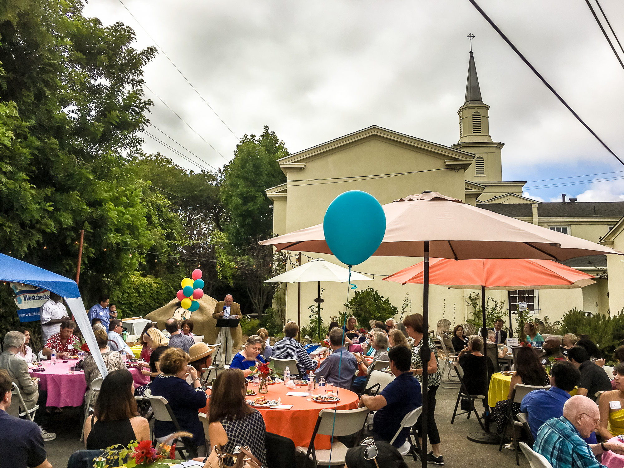 WPDC Summer Party 2017-4.jpg