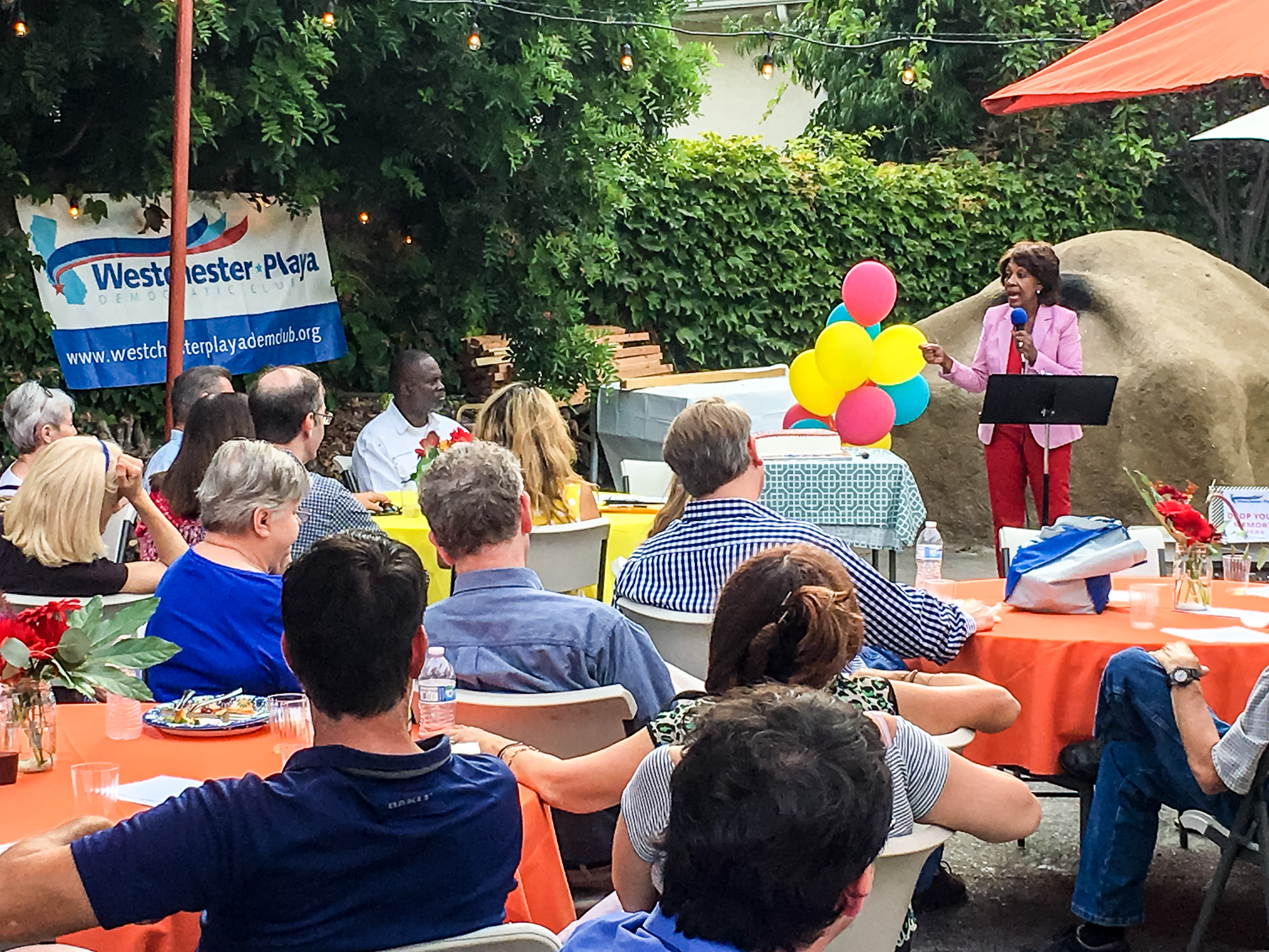 WPDC Summer Party 2017-10.jpg