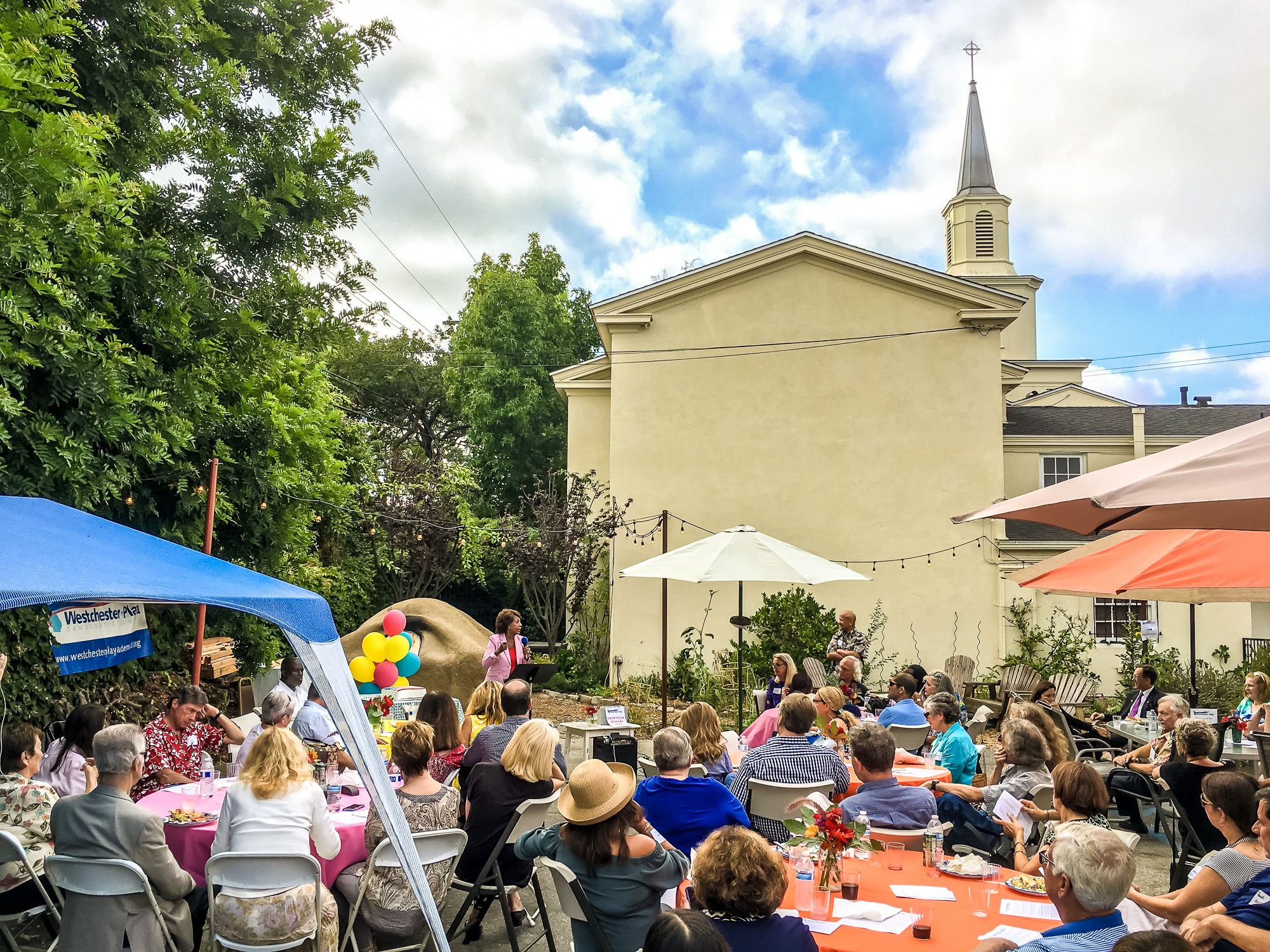 WPDC Summer Party 2017-12.jpg