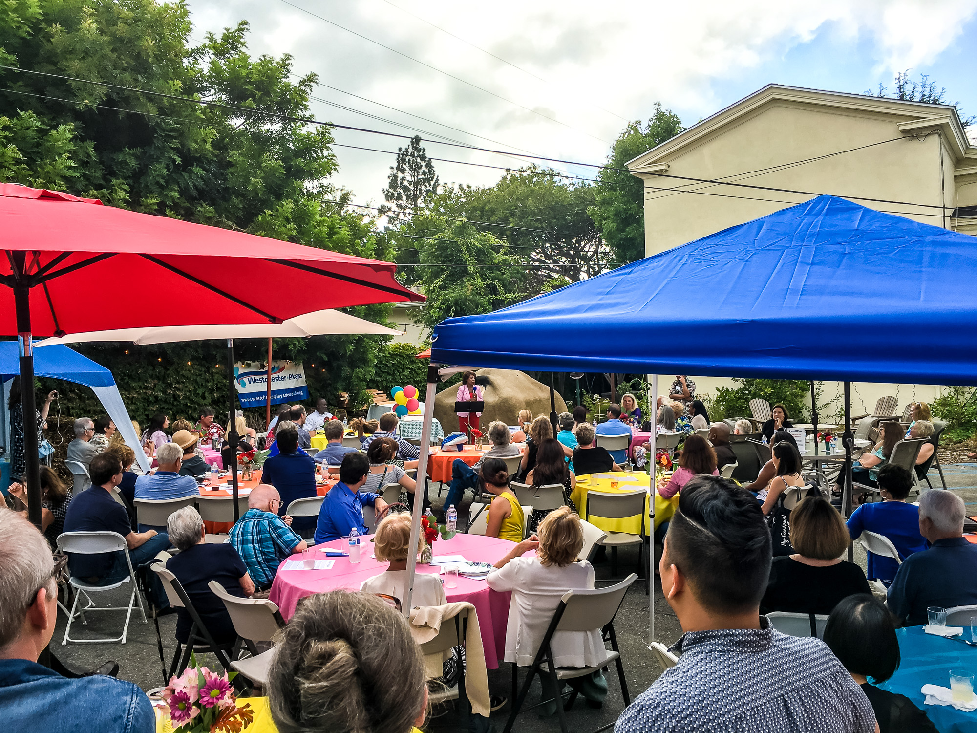 WPDC Summer Party 2017-15.jpg