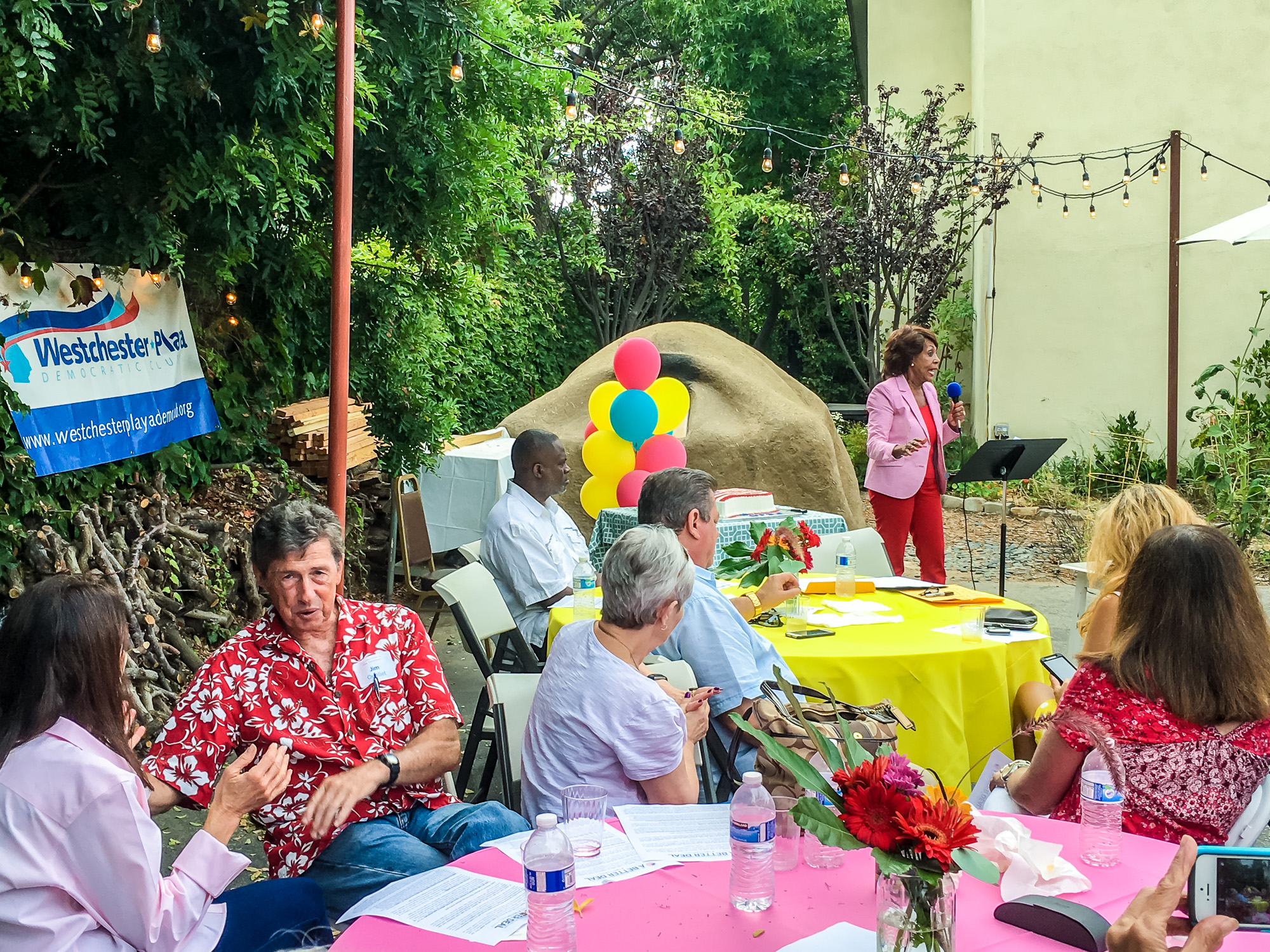 WPDC Summer Party 2017-14.jpg