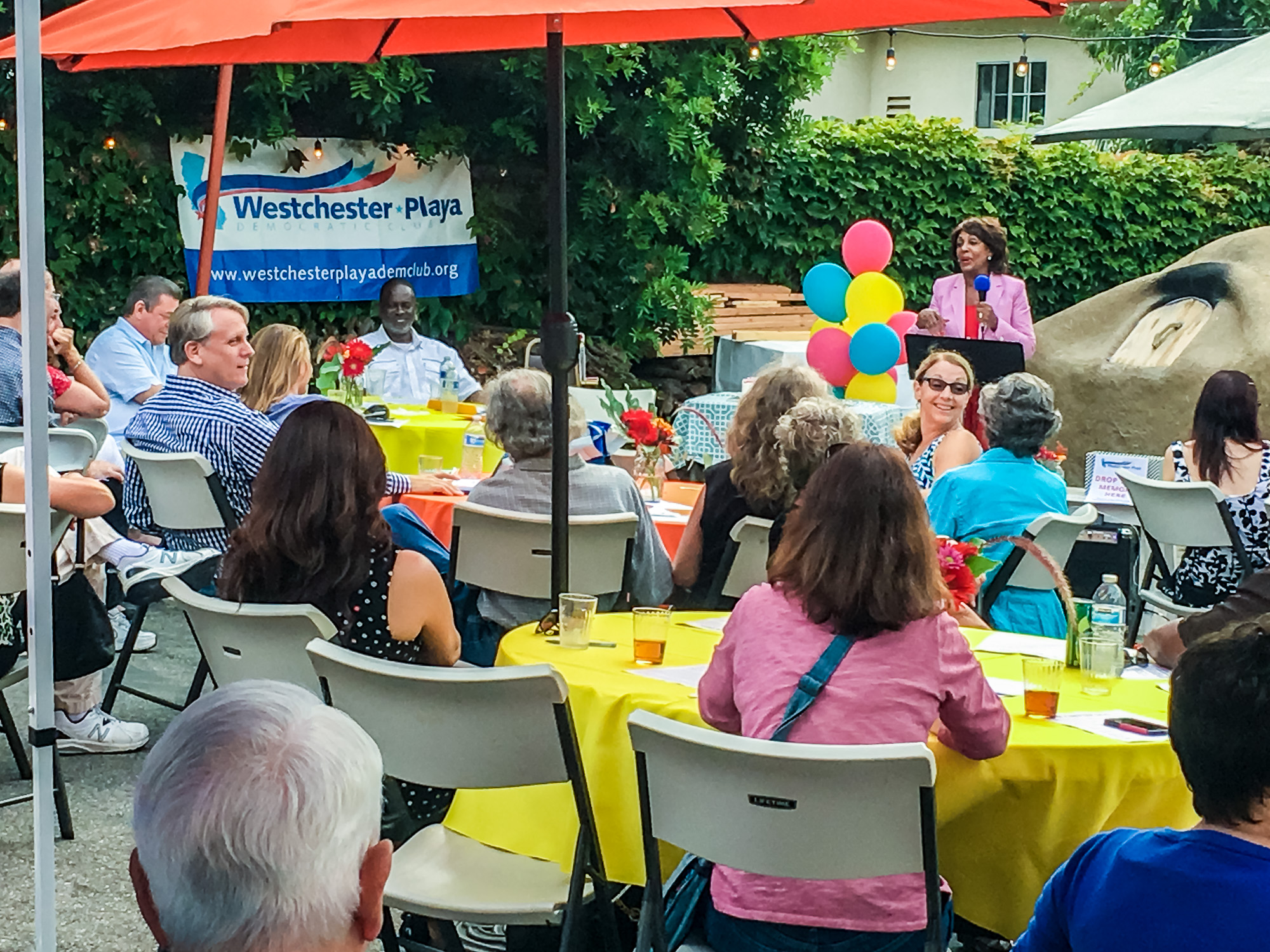 WPDC Summer Party 2017-16.jpg
