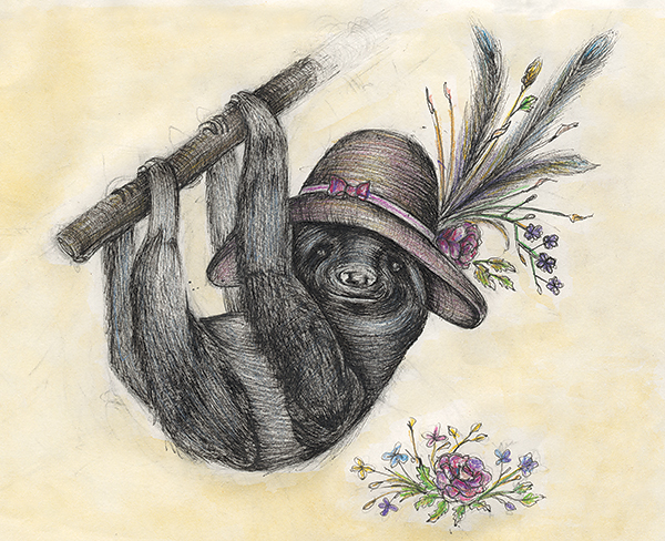 SLOTH IN SUNDAY BEST   Pen & Ink with Colored Pencil