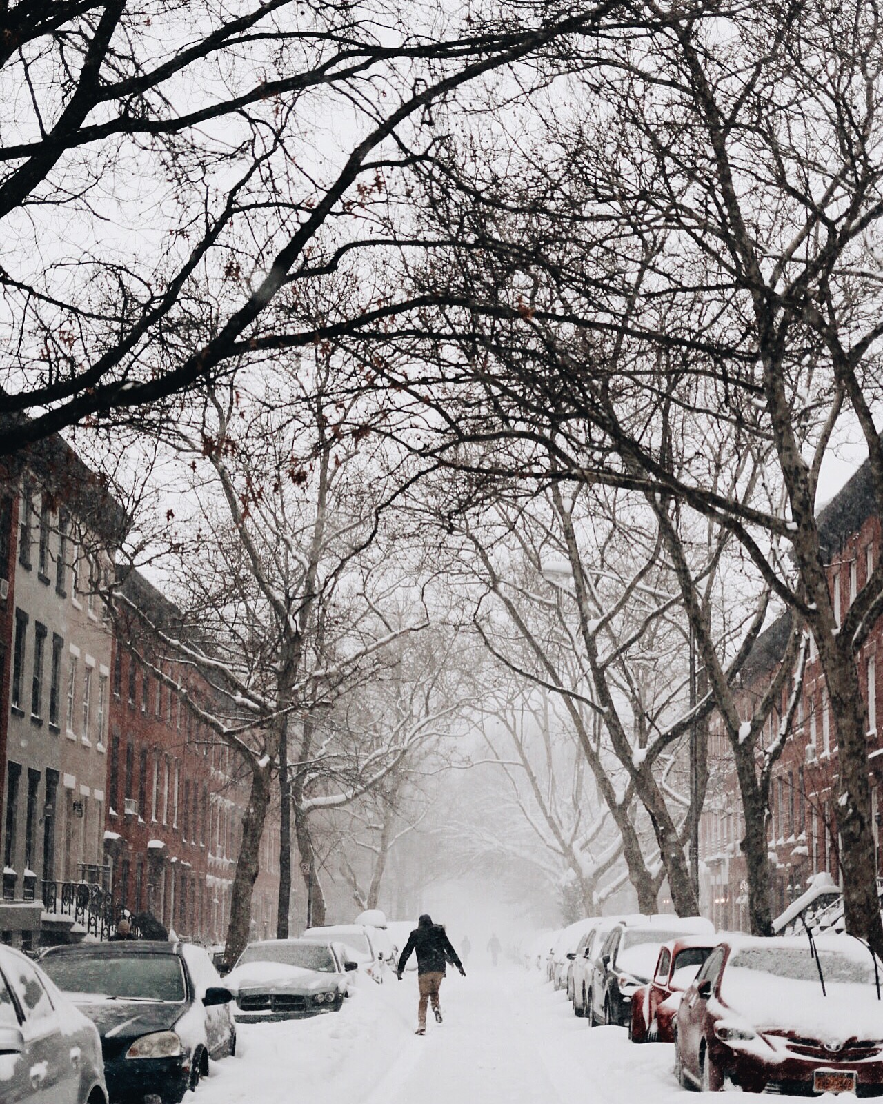 Luquer Street, Brooklyn. About 2:00pm 01.23.16