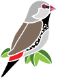 Finch logo_bird_RGB.jpg