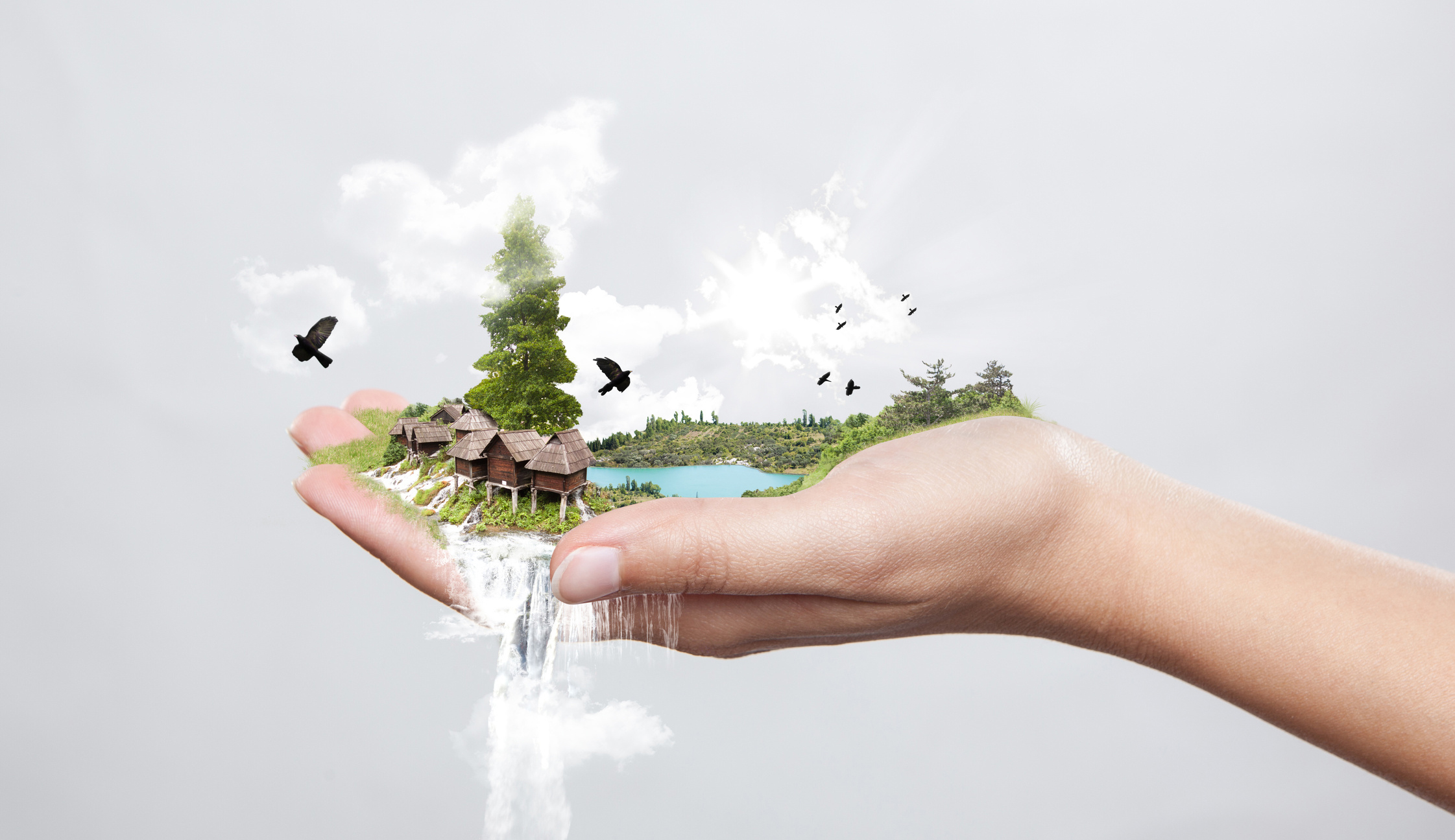 De bescherming van de natuur is de verantwoordelijkheid van ons allen...