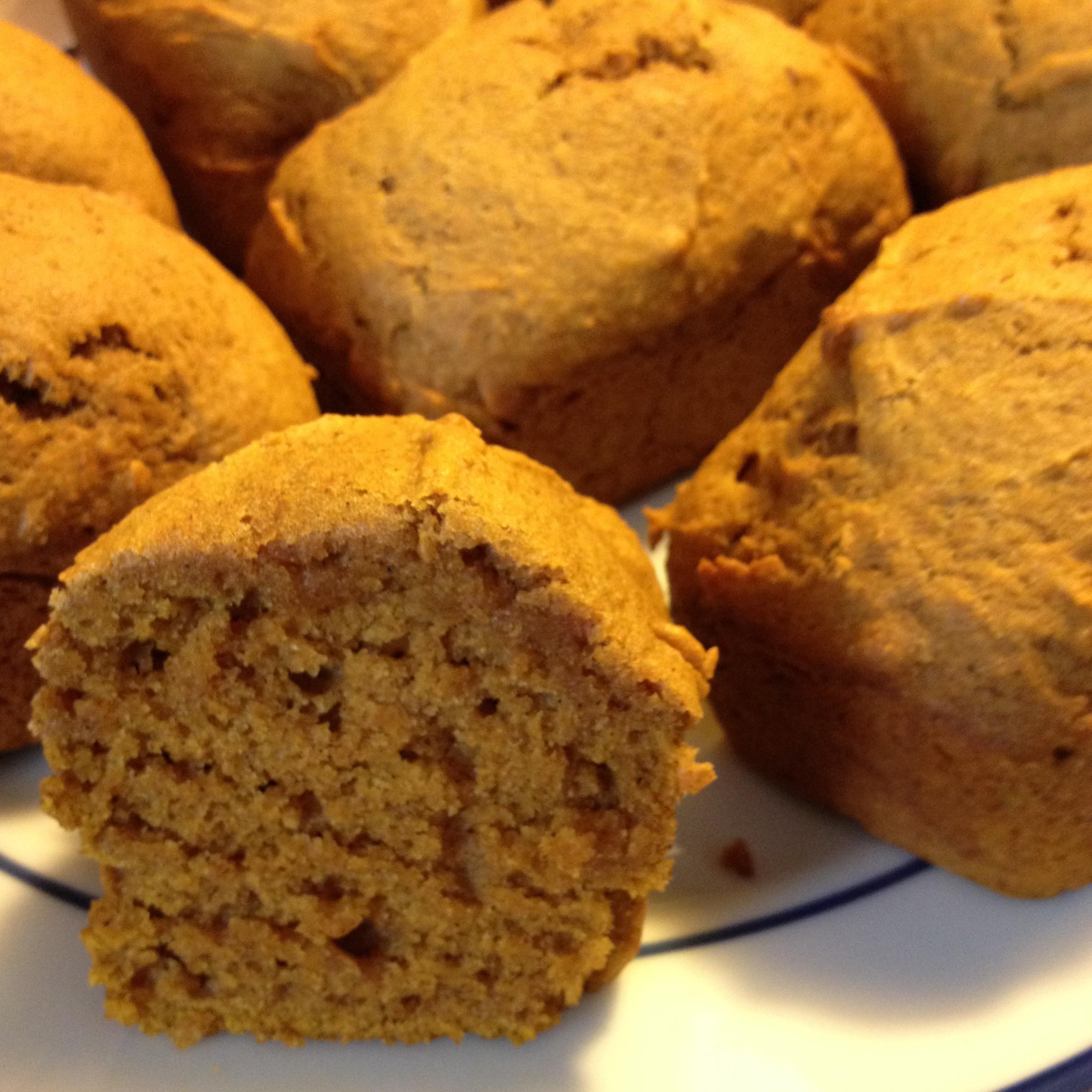 Pumpkin Mini Loaves from JenniferJuniper.net  dairy free, nut free