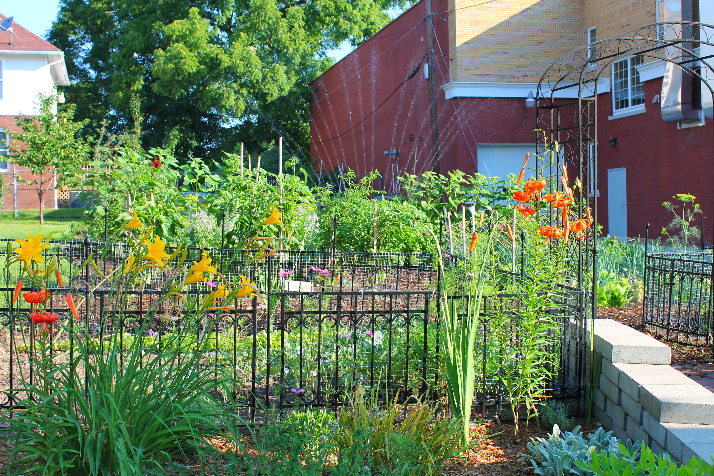 A flower and vegetable garden maintained by residents adds beauty to the neighborhood.