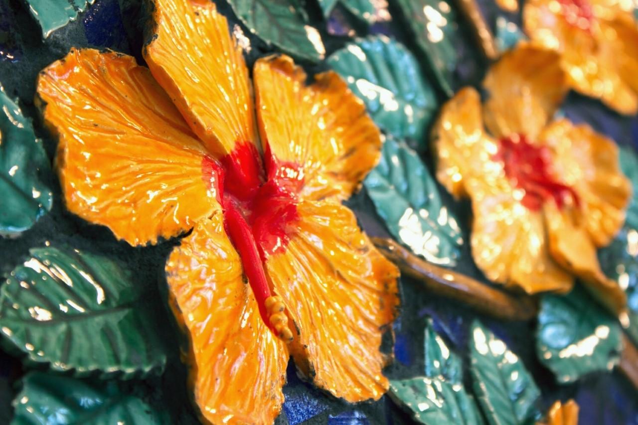close up hibiscus.jpg