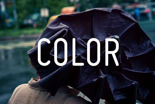 COLOR UMBRELLA (500).jpg