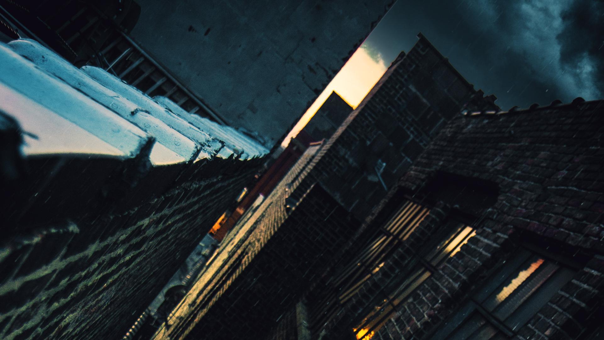RAINDOG_FILMS_BOARD_02 (00000).jpg