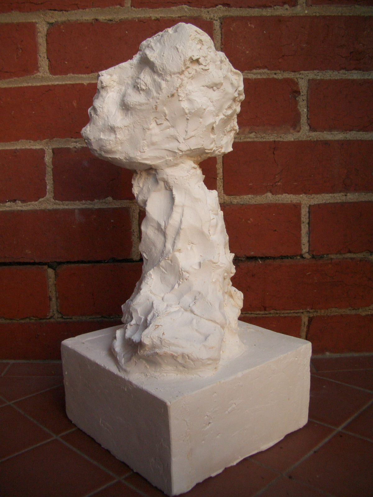 Bust (2008) Plaster 30x30x50cm (approx)