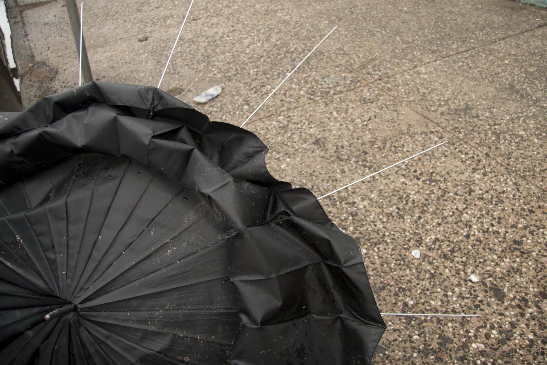 umbrella_carousel.jpg