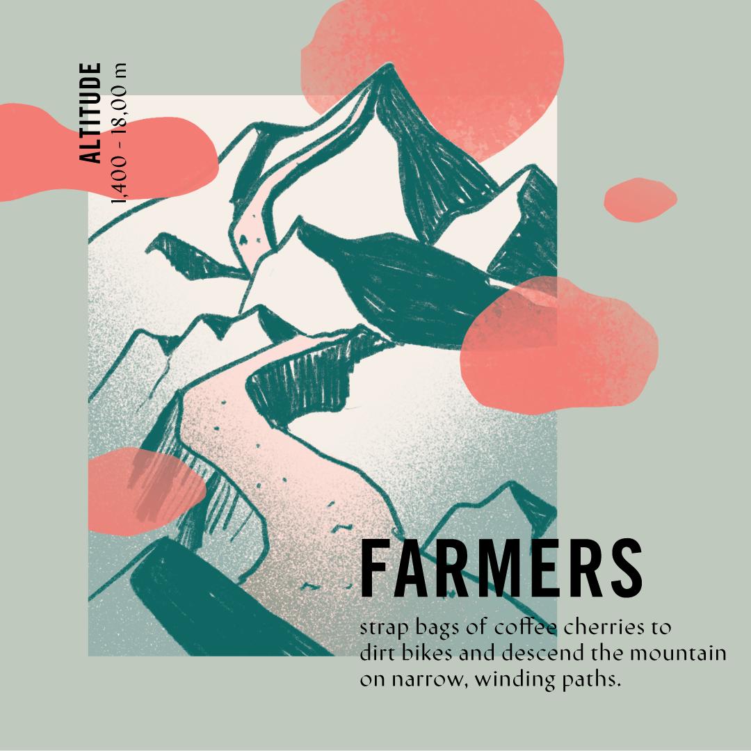 LD3-rsvSocial-vietnam-r2-farmers.png
