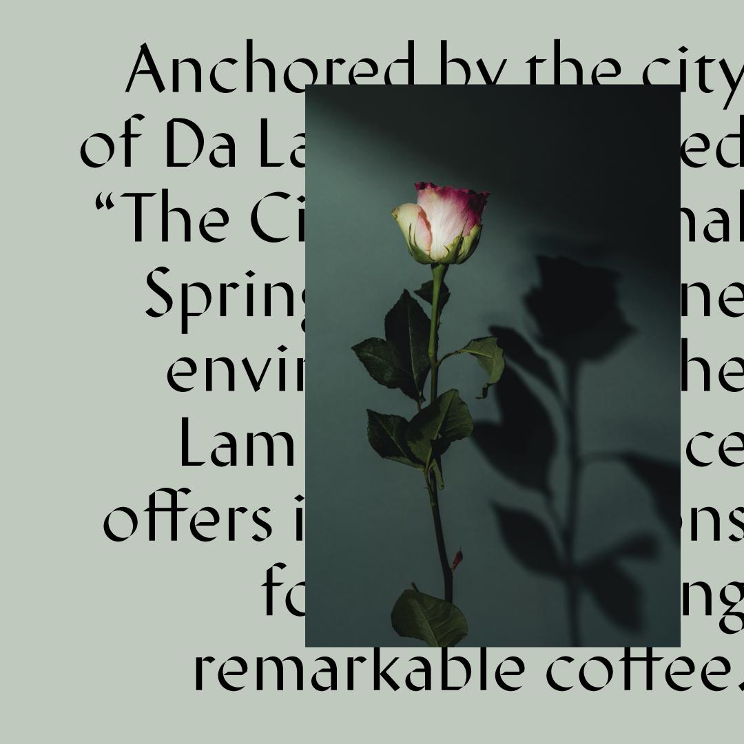 LD3-rsvSocial-vietnam-r2-text.png