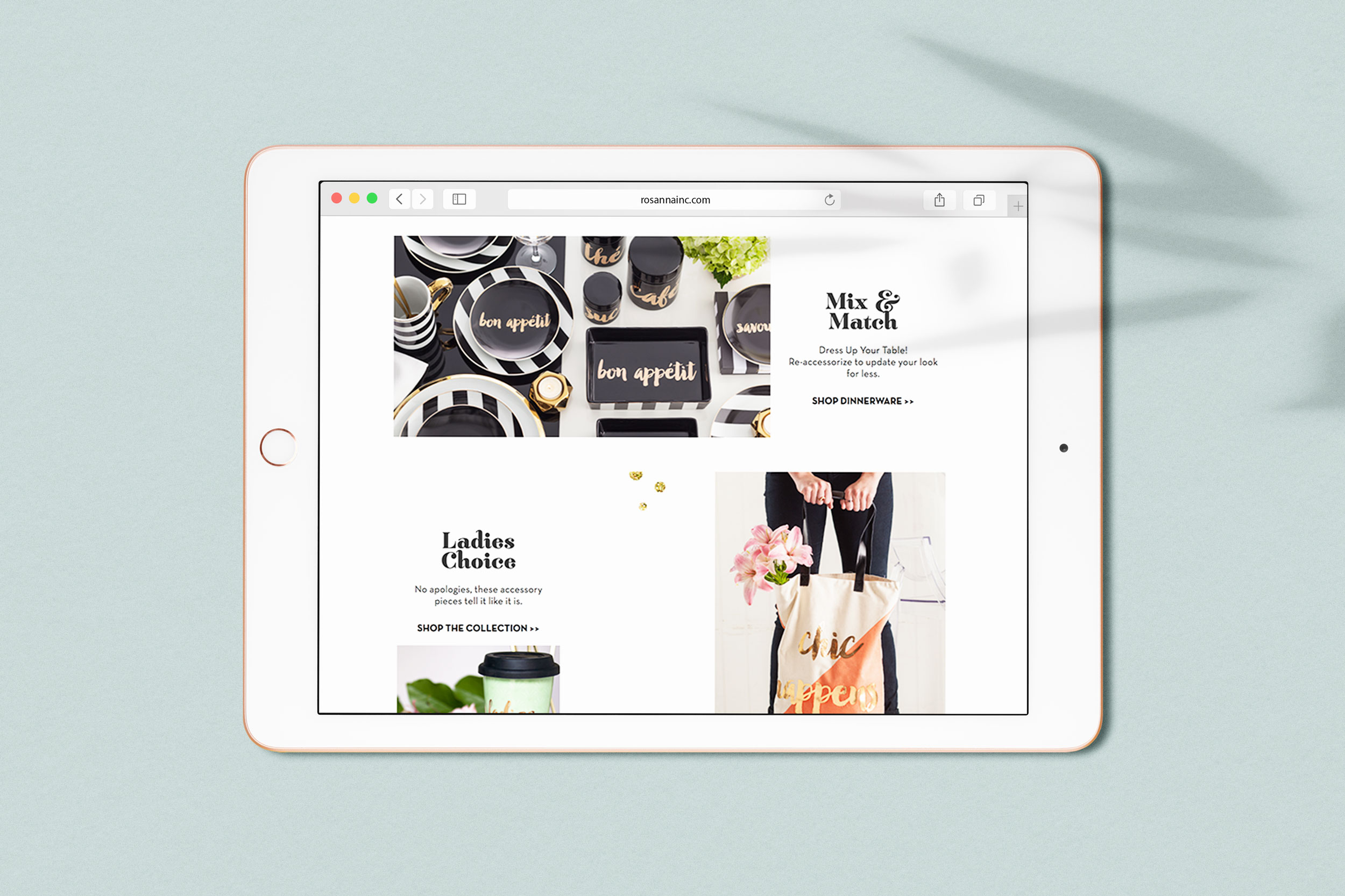 01_rsnWebsite-Ida-iPad-Scene-Creator-v2.jpg