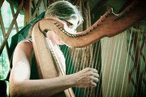Magician of sound, Margot Krimmel.  www.boulderharp.com