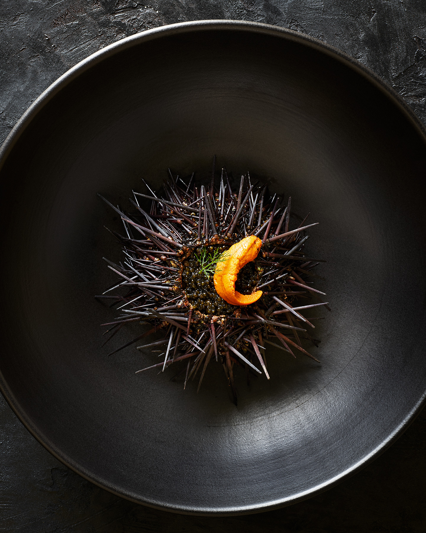 food stylist Sea-Urchin.jpg