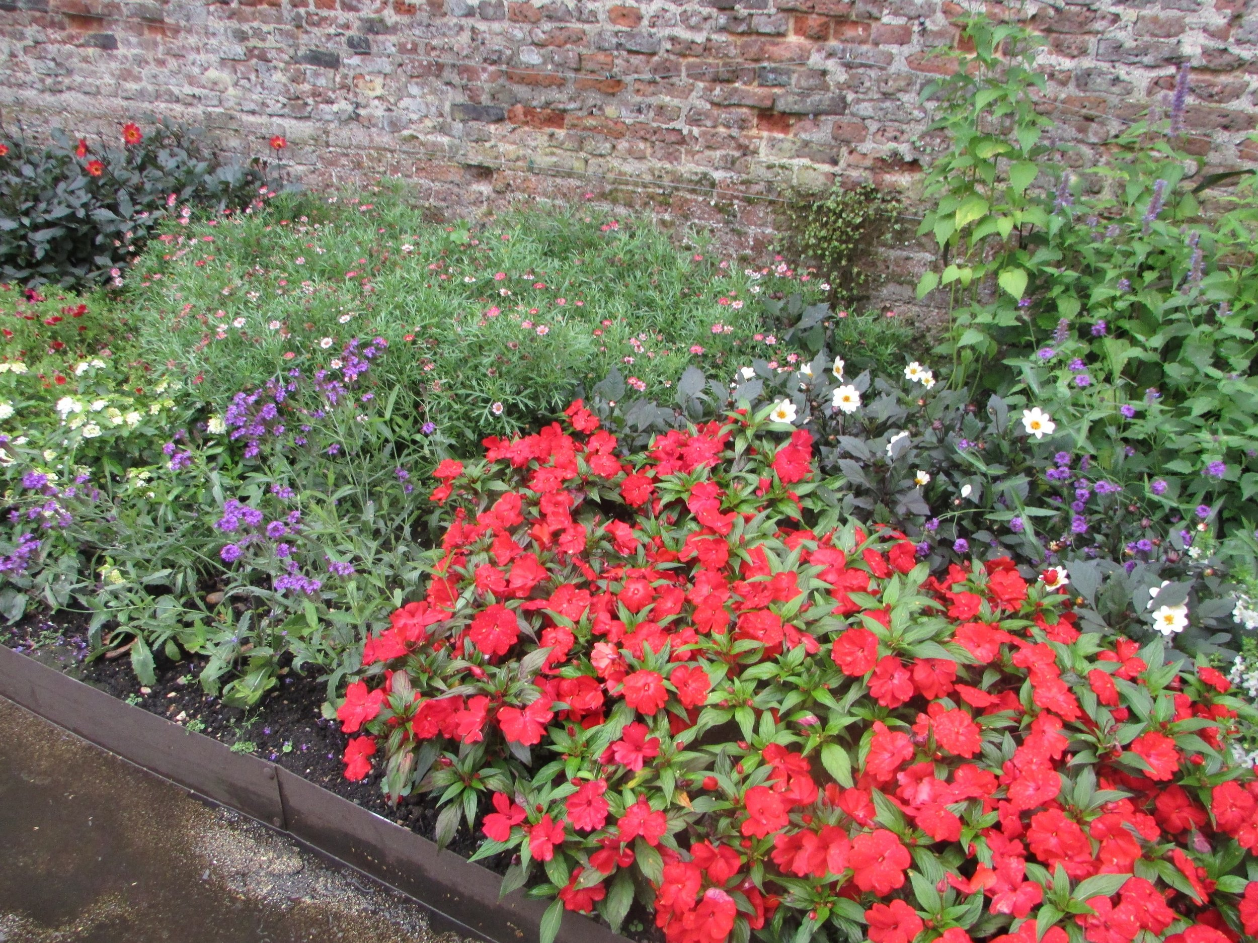 Hampton Court gardens 8.jpg