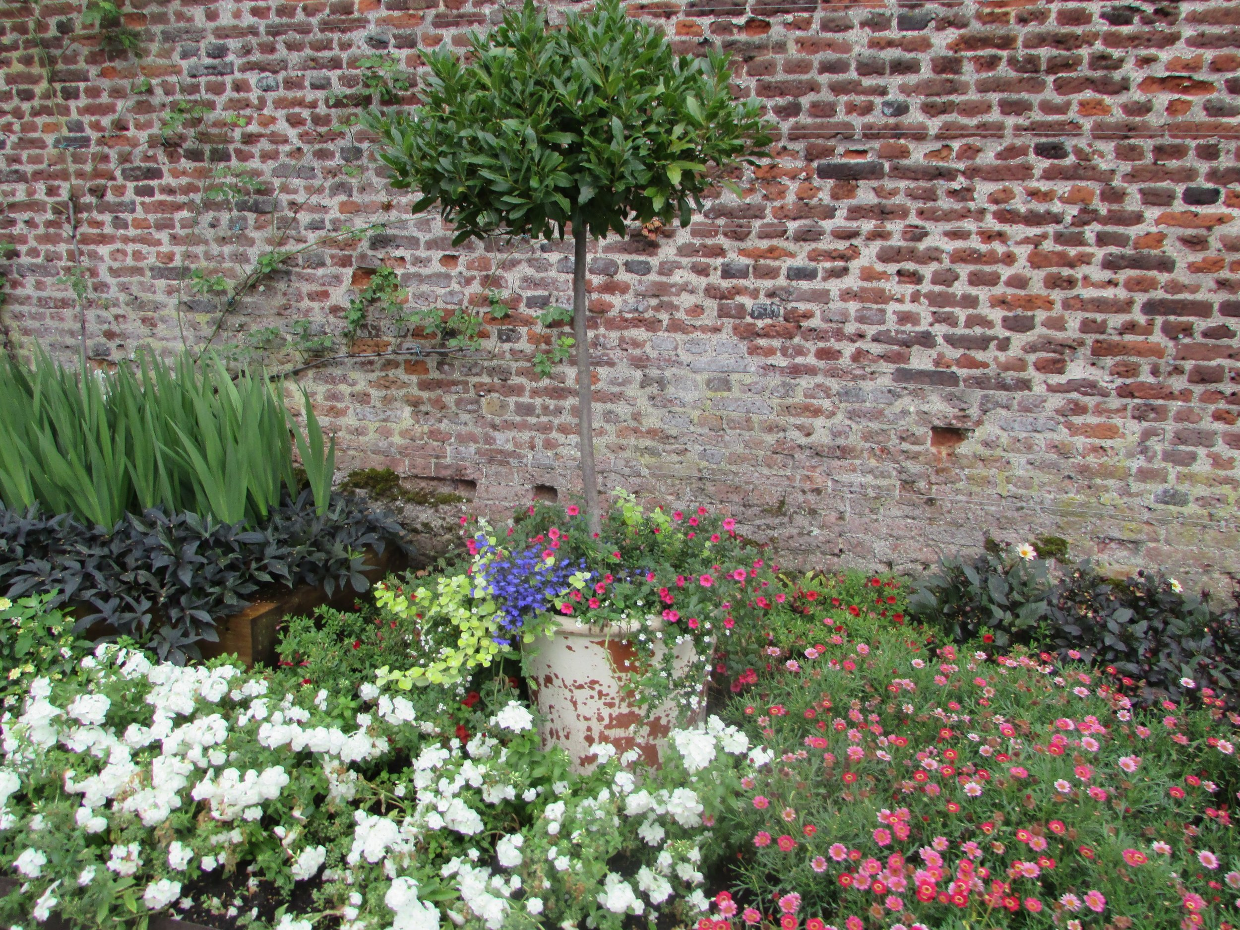 Hampton Court gardens 6.jpg