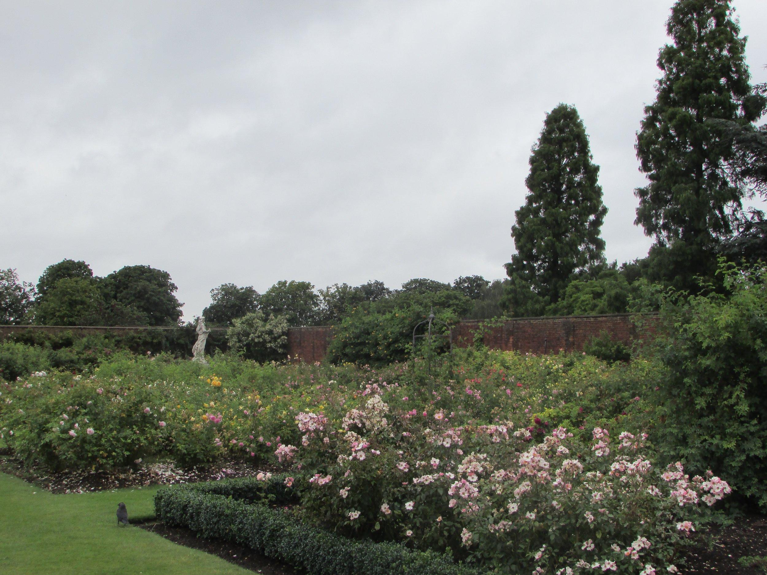 Hampton Court gardens 4.jpg