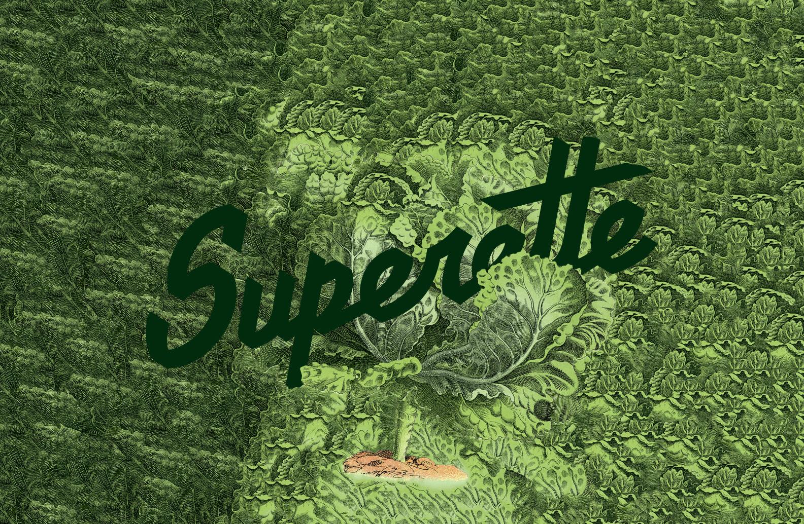 Superette-_Backgrounds_lettuce_logo.jpg