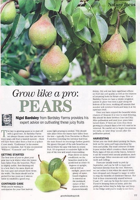 Grow your own pear article Feb 2016.jpg
