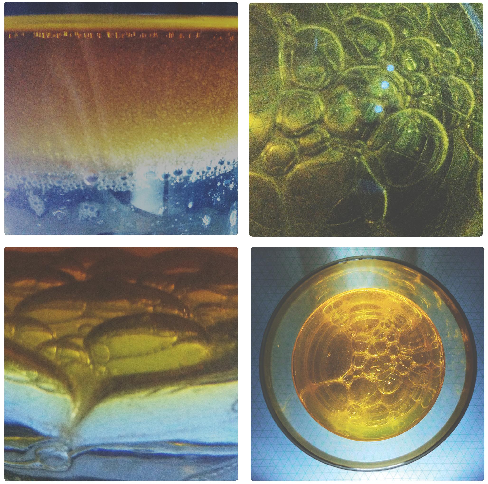 oilpics.jpg
