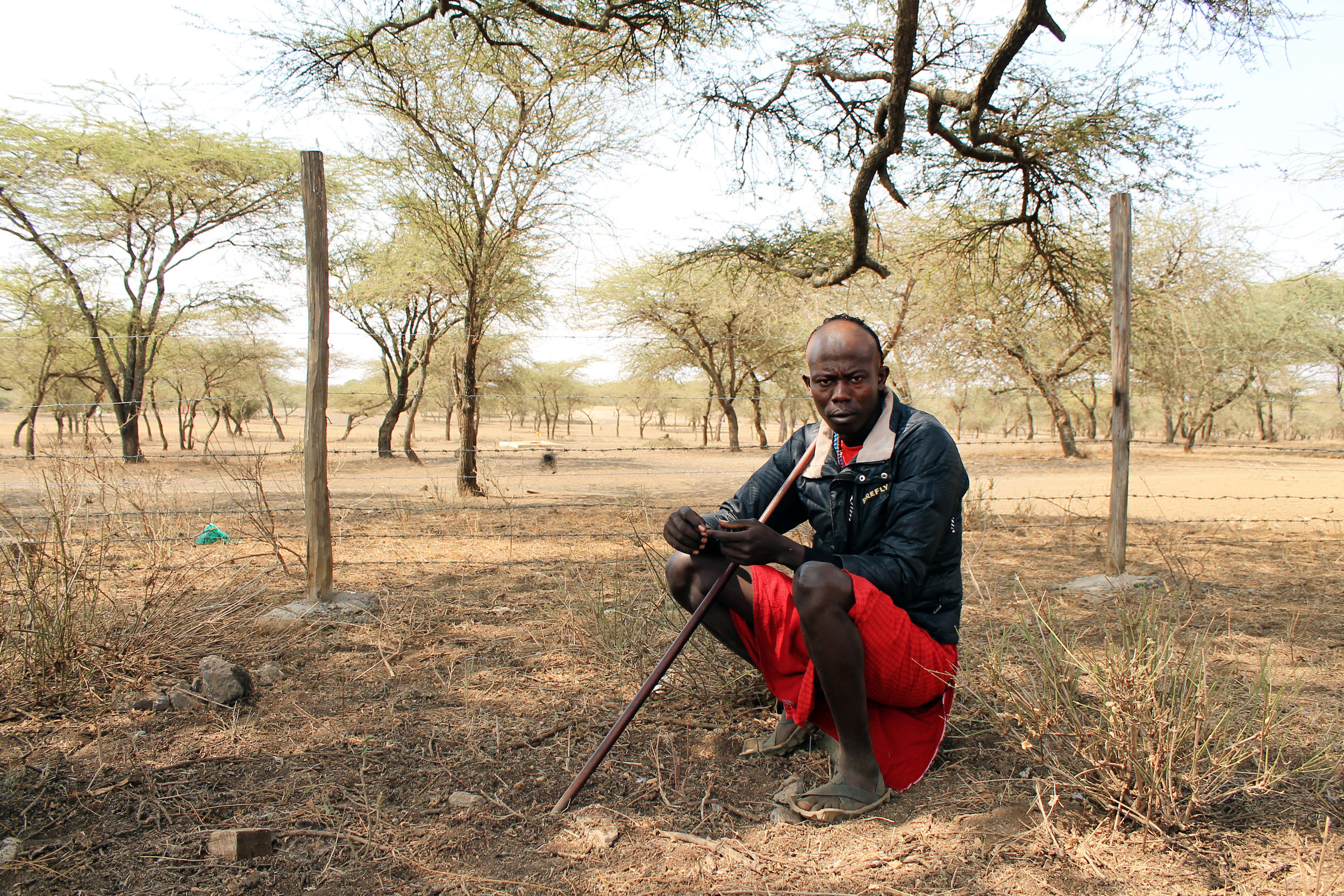 Especially in the dry season, lack of water and vegetation due to degradation make it very difficult for herder and head of the morans (Maasai warriors) Masheer Torei to sustain his livestock. Torei now needs to travel long distances in search of pasture, and even further to find water. (© Conservation International/photo by Christina Ender)