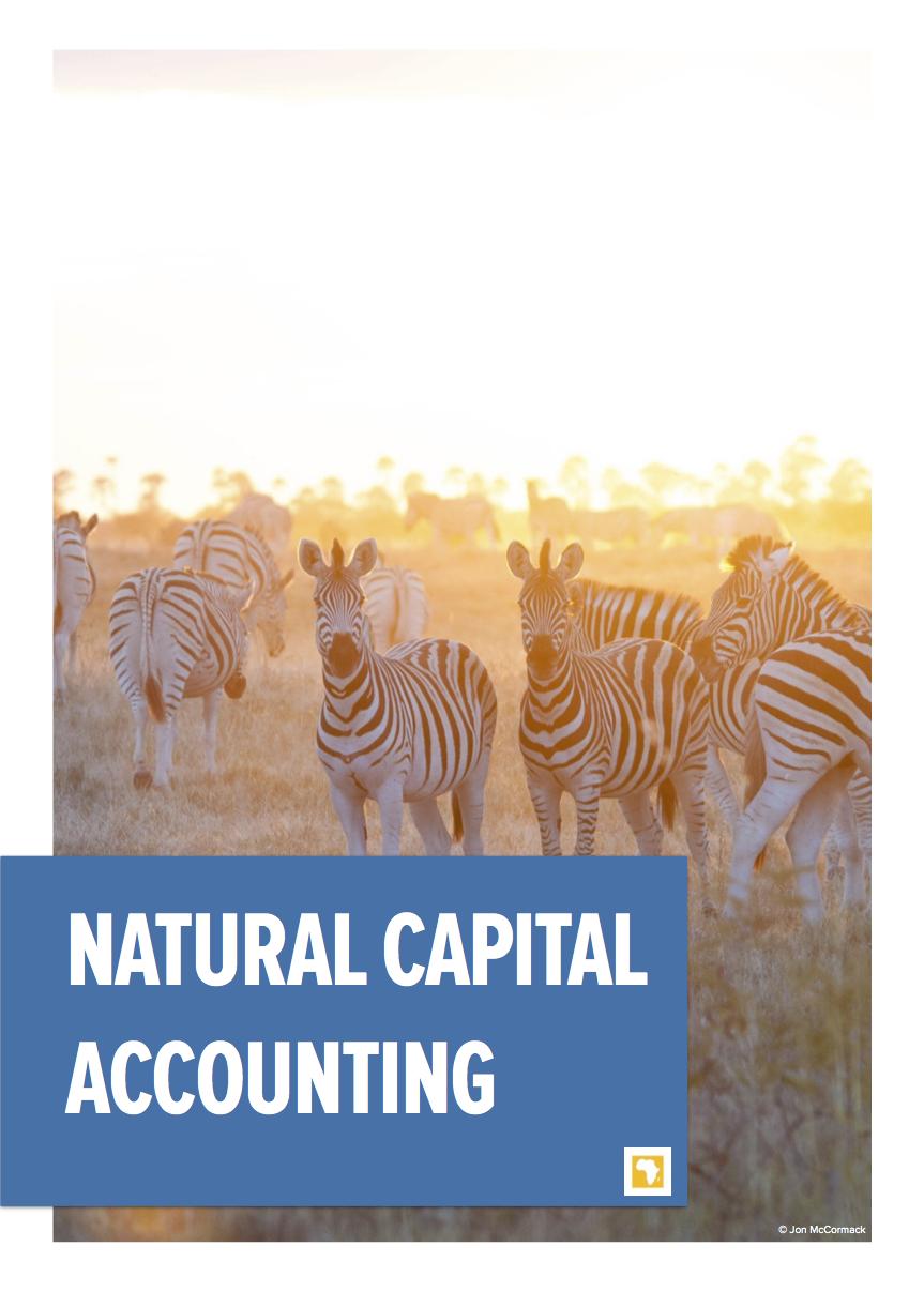 GDSA Natural Capital Accounting Brief