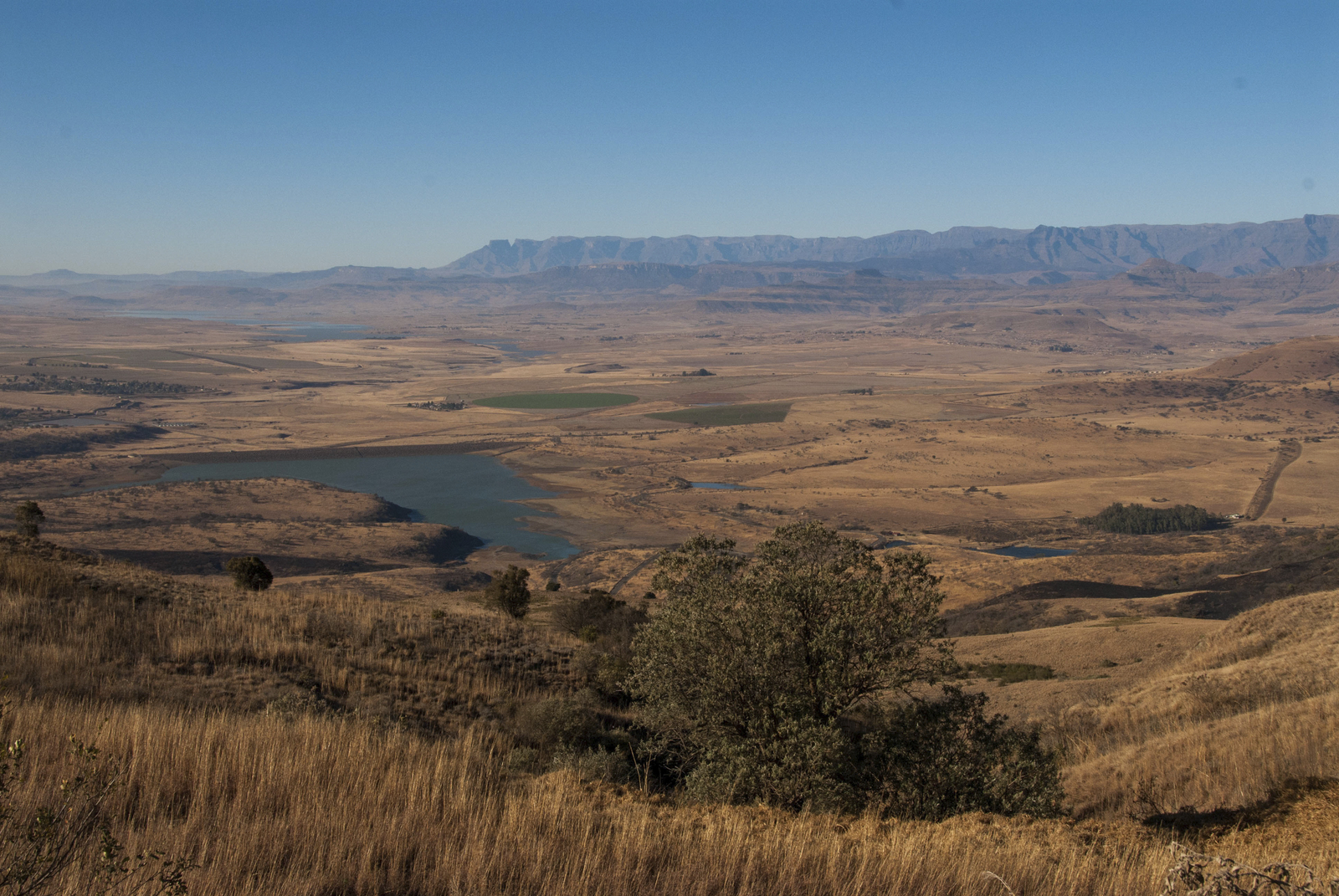 Grasslands in southern Africa. ©Rod Mast