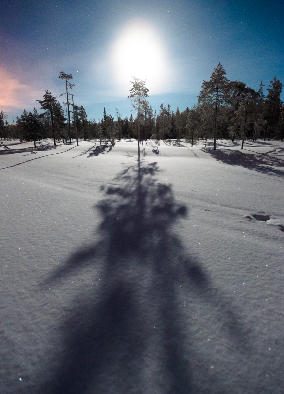 Lapland-008.jpg