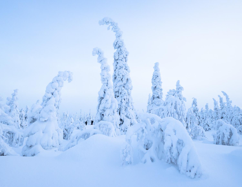 Lapland-012.jpg
