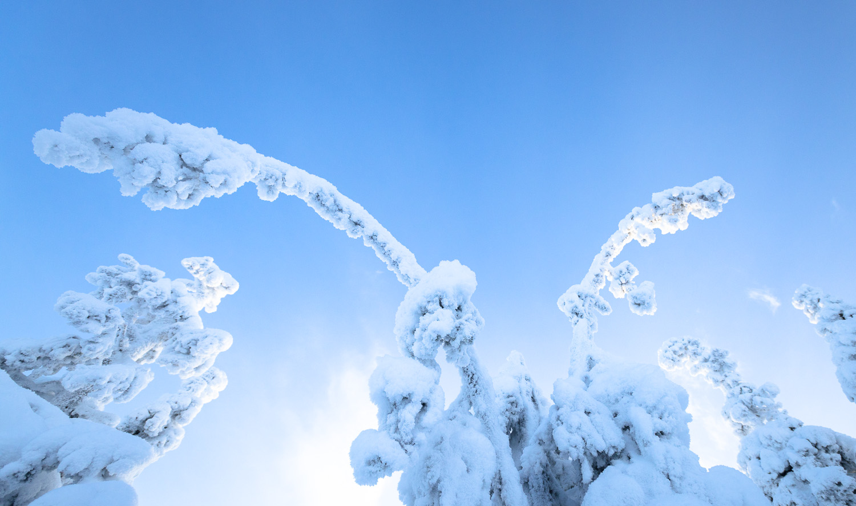 Lapland-014.jpg